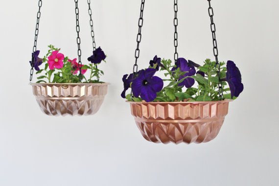 hanging-plant-cake-tin-luxe-property-group-property-developers-london